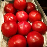 19-06-10-19-01-21-709_photo.jpg